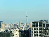 【高層階東側からの眺め】東京スカイツリーが見えるかも?(一例)