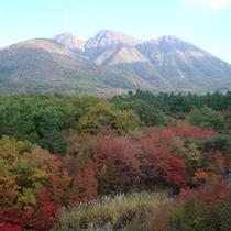 *紅葉の時期の登山は抜群の景色です