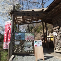 *やまびこの森(ローラーすべり台、遊具広場)¥210