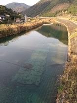 宗呂の川  綺麗な川です(^.^)