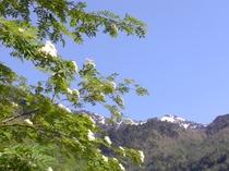 春の穂高連峰。槍ヶ岳も見えています