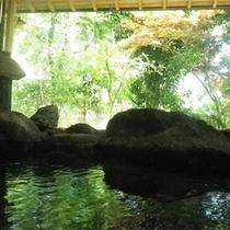 *男女別大浴場一例/内風呂も岩風呂です。四季折々の景色を眺めながら天然温泉を堪能。