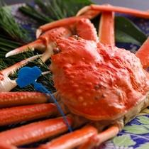茹で蟹(湯がきたて地蟹)1