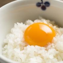 烏骨鶏卵の卵かけごはん