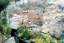庭園014