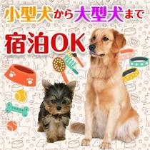 小型県から大型犬まで宿泊可!
