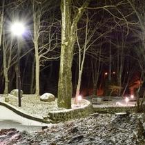 冬は木立の中で幻想的な雰囲気に