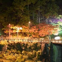 紅葉の日光東照宮前