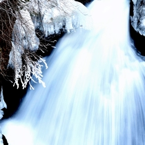 竜頭の滝は徒歩1分