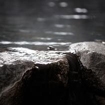 ●[貸切風呂]岩風呂