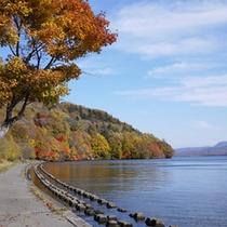 *秋/屈斜路湖に浮かぶ、和琴半島。1週約2.4キロの森の散策も出来ます。