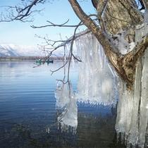 *冬/大きなつららや霧氷など、神秘の清流域で雪と氷の世界をお楽しみください。