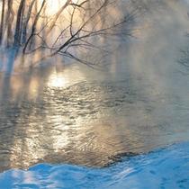 *冬/早朝に見られるケアラシや霧氷はとても美しく、幻想的な風景!