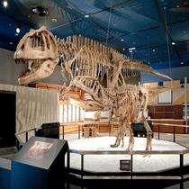 ■名古屋科学館:生命館2階 マプサウルス