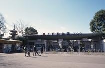 ◆上野動物園