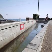 *【周辺観光】熱川ほっとぱぁーくで海を眺めながらの足湯。