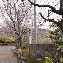 *【周辺観光】駅から徒歩5分。桜をイメージした造りの熱川温泉桜坂公園。