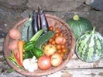【自家製野菜】採れたての自家製食材です。エコファーマーは食の安全にこだわります。