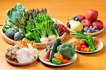 色鮮やかな旬の食材