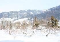 窓からの景色(1月撮影)