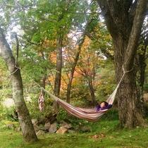 涼しい風と紅葉を感じながら静かに過ごすひと時