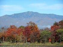 四季折々に美しい姿を見せ、心穏やかにしてくれる自然
