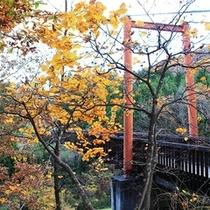 つり橋秋の風景