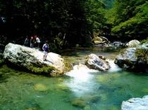 深山自然3