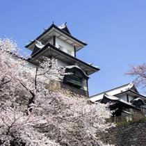 【観光情報】石川門 桜の季節 金沢人のお花見宴会といえば沈床園。周囲はお花見に最適!