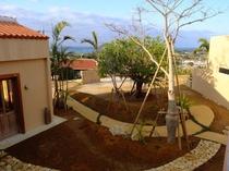 somos main garden