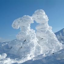 *蔵王の冬の名物「樹氷」。世界的に知られる自然の芸術品です!