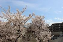 館内からの景色(春)