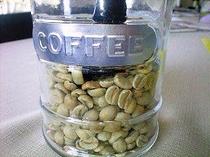 焙煎前のコーヒーの生豆