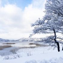 *【周辺(冬)】雪と田沢湖のコントラストは、幻想的な雰囲気が漂います。