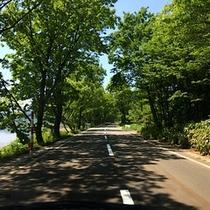 *【施設周辺】田沢湖沿いの道路。瑠璃色の湖と新緑の木々を眺めながら、絶景ドライブを楽しめます。