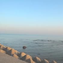 【守江の海】入り江になっているため波も穏やかです