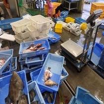 沼津魚市場 小細工なし!素材で勝負します!
