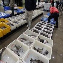 沼津魚市場 伊豆最高レベルの魚にこだわります