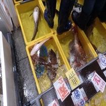沼津魚市場 お腹にもたれない地魚フレンチ