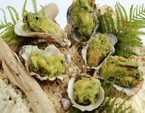 ayana温前菜牡蠣