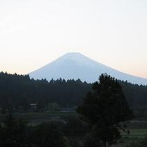 *【風景】富士山の山裾に佇む当館ならではの景色がご覧いただけます。