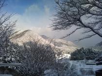 龍頭山 冬