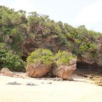 海岸にある夫婦岩