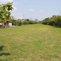 伊芸(いげい)海浜公園 芝生の広場ではかけっこも。