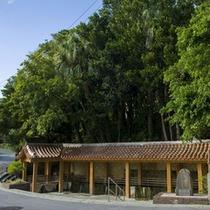 【周辺情報】金武大川 周辺には遊具や水遊びができる公園も