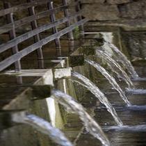 【周辺情報】金武大川 県下有数の湧泉で長寿の泉と呼ばれます 【車で約10分】