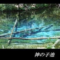 神の子池①