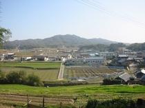 裏山からの風景