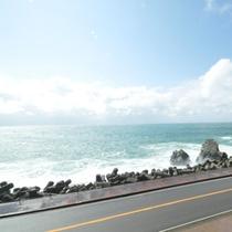【越前海岸】宿の目の前は日本海!素晴らしい眺望をお楽しみください