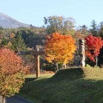 【秋の三階滝公園】色とりどりの紅葉が賑やかに公園を彩ります。